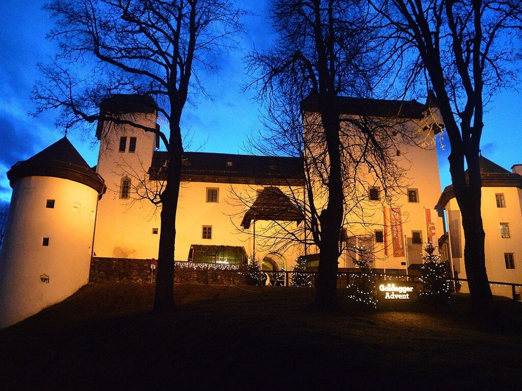 Ferienhaus Modernes Ferienhaus in Goldegg, Salzburg nahe dem Skigebiet (253612), Goldegg, Pongau, Salzburg, Österreich, Bild 18