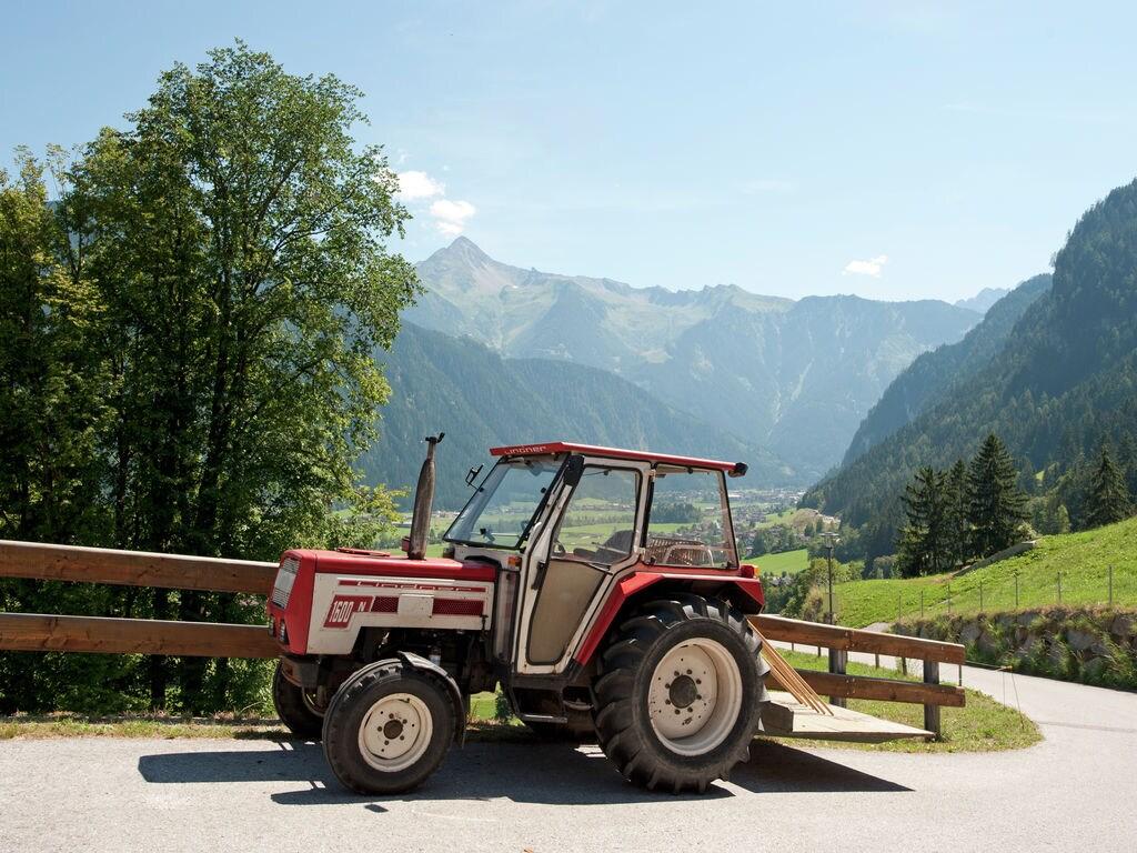 Ferienwohnung Ahornblick (253814), Ramsau im Zillertal, Mayrhofen, Tirol, Österreich, Bild 14
