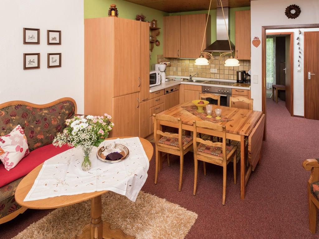 Ferienwohnung Gemütliches Apartment in Baden-Württemberg am Wald (255362), Schonach, Schwarzwald, Baden-Württemberg, Deutschland, Bild 2