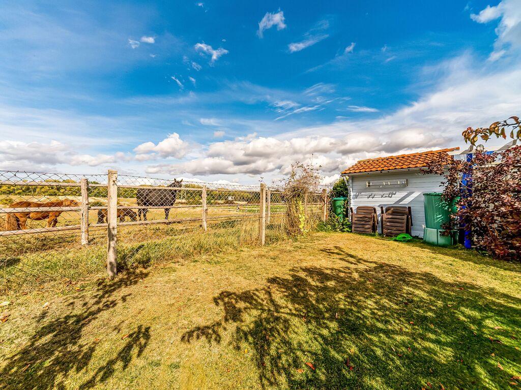 Ferienwohnung Gemütliches Appartement in Wienrode am Wald (255069), Blankenburg (DE), Harz (Sachsen-Anhalt), Sachsen-Anhalt, Deutschland, Bild 34