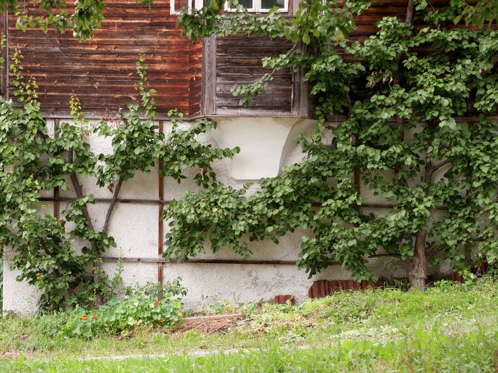 Ferienwohnung Hauser (253729), Fügen, Zillertal, Tirol, Österreich, Bild 23