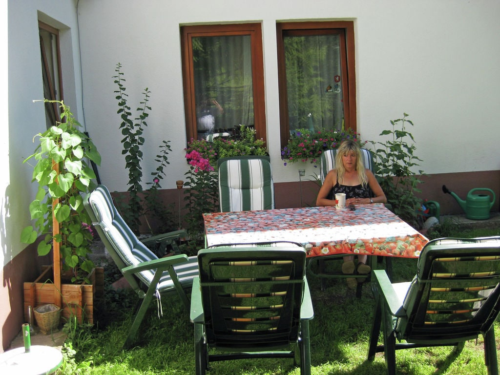 Appartement de vacances Ingrid (254008), Pettneu am Arlberg, St. Anton am Arlberg, Tyrol, Autriche, image 29