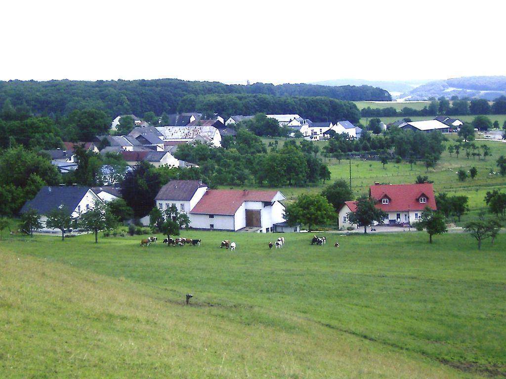 Ferienwohnung Wunderschönes Ferienhaus mitten in den Hügeln in Olsdorf (255199), Bettingen, Südeifel, Rheinland-Pfalz, Deutschland, Bild 20