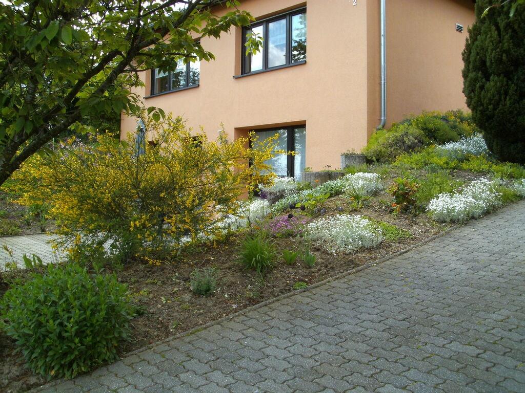 Ferienwohnung Wunderschönes Ferienhaus mitten in den Hügeln in Olsdorf (255199), Bettingen, Südeifel, Rheinland-Pfalz, Deutschland, Bild 15