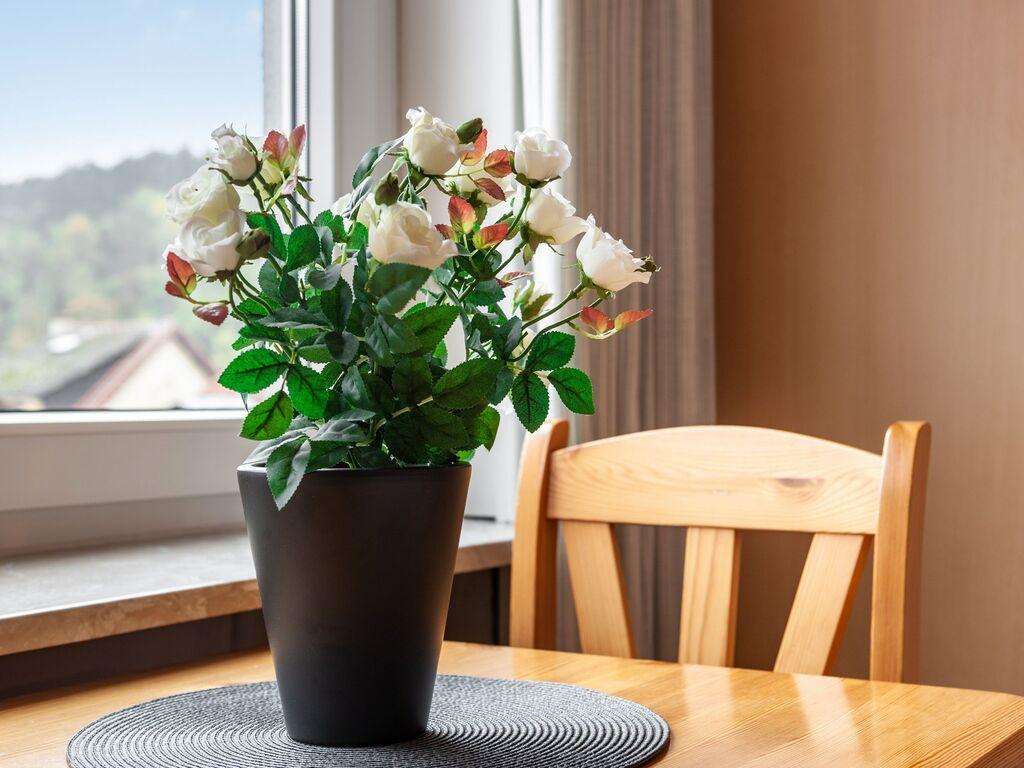 Ferienwohnung Schönes Appartement in der Nähe von Luxemburg mit vielen Einrichtungen (255204), Bollendorf, Südeifel, Rheinland-Pfalz, Deutschland, Bild 35
