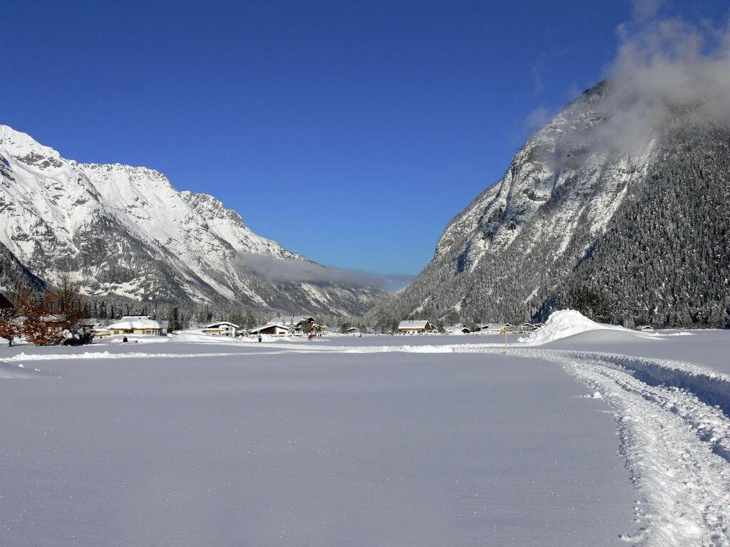 Ferienwohnung Donnerrose (253692), Leutasch, Seefeld, Tirol, Österreich, Bild 10