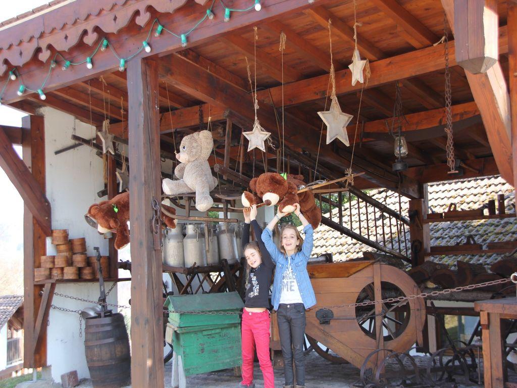 Maison de vacances Les Chalets des Ayes 9 (59133), Le Thillot, Vosges, Lorraine, France, image 9