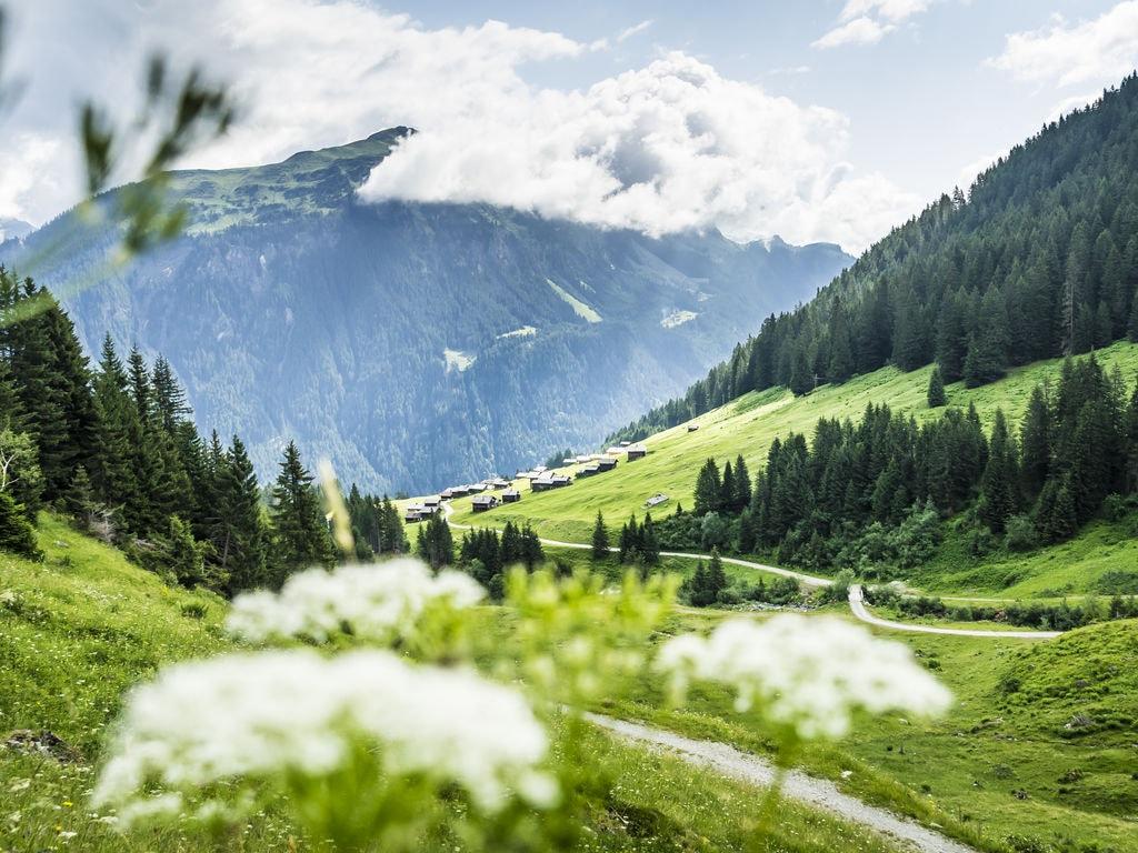 Ferienwohnung Schuchter (254048), Tschagguns, Montafon, Vorarlberg, Österreich, Bild 25
