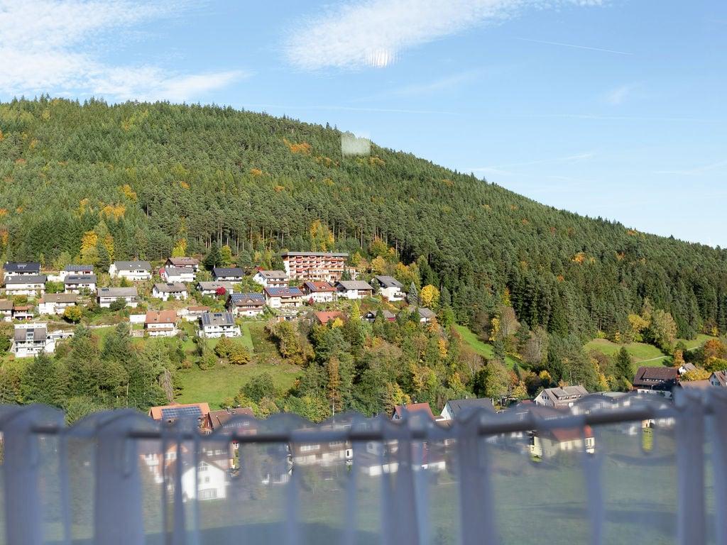 Ferienwohnung Pojtinger (255336), Baiersbronn, Schwarzwald, Baden-Württemberg, Deutschland, Bild 8