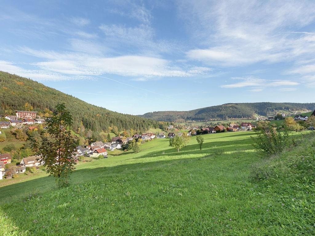 Ferienwohnung Pojtinger (255336), Baiersbronn, Schwarzwald, Baden-Württemberg, Deutschland, Bild 19