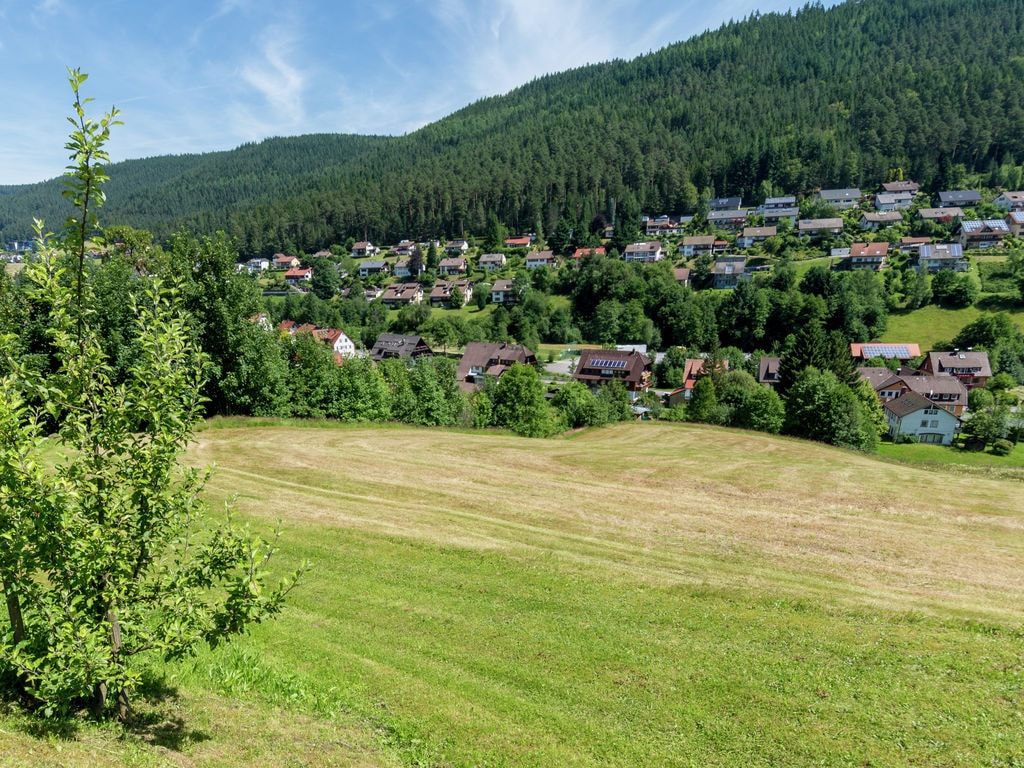Ferienwohnung Pojtinger (255336), Baiersbronn, Schwarzwald, Baden-Württemberg, Deutschland, Bild 18