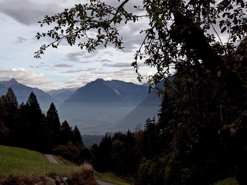 Ferienwohnung Türtscher (254032), Sonntag, Grosses Walsertal, Vorarlberg, Österreich, Bild 27