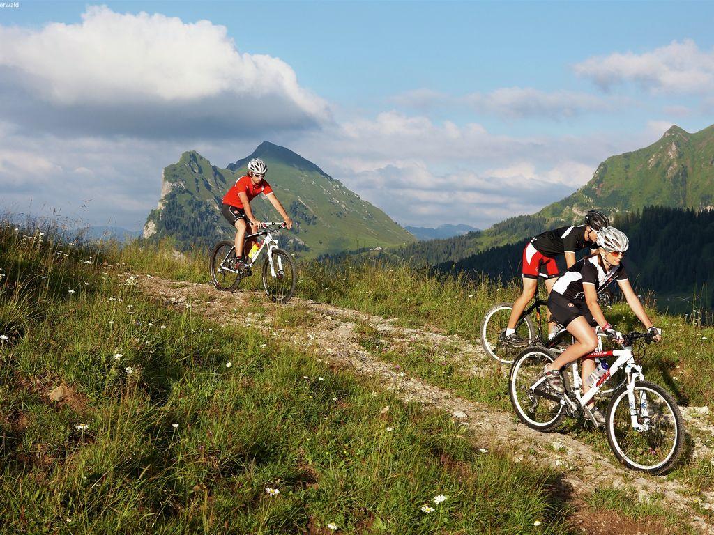 Ferienwohnung Türtscher (254032), Sonntag, Grosses Walsertal, Vorarlberg, Österreich, Bild 17