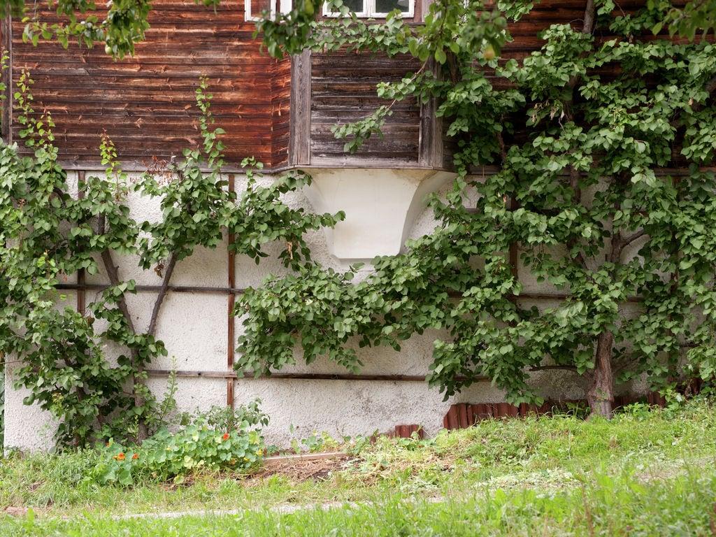 Ferienwohnung Modernes Appartement in Uderns nahe dem Skigebiet (253757), Uderns, Zillertal, Tirol, Österreich, Bild 32