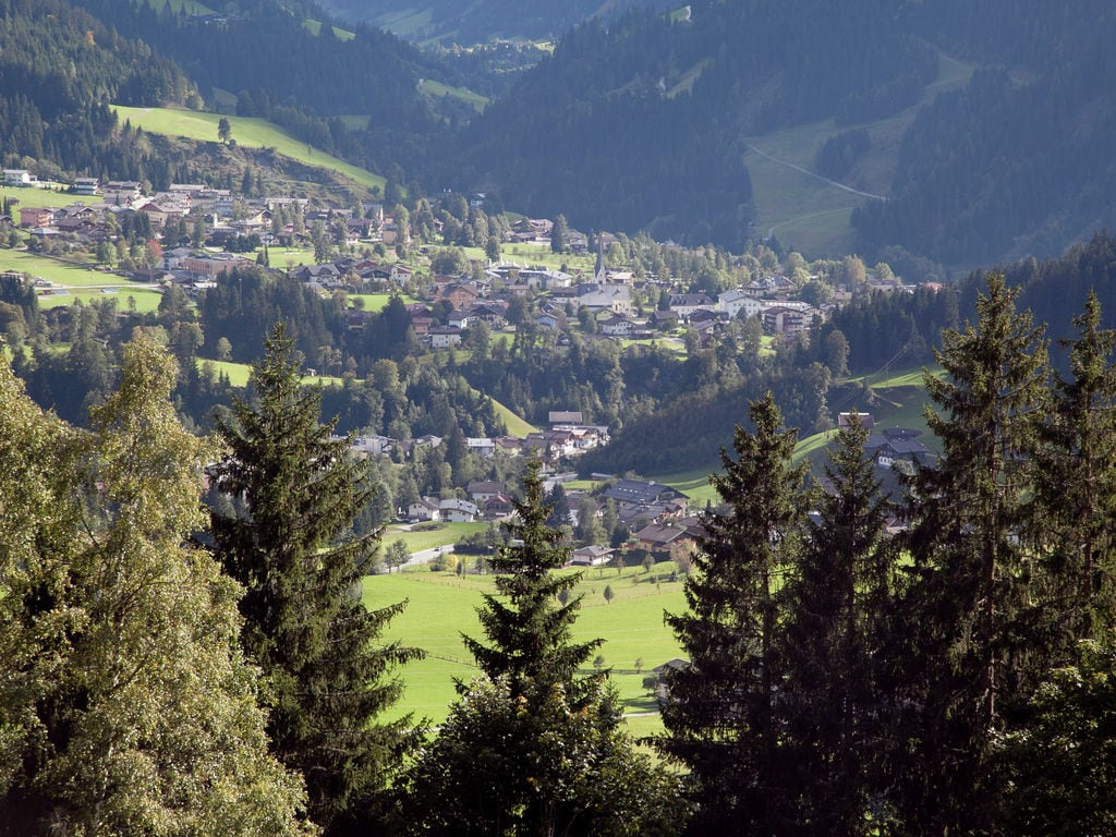 Appartement de vacances Tanja (253592), Wagrain, Pongau, Salzbourg, Autriche, image 19