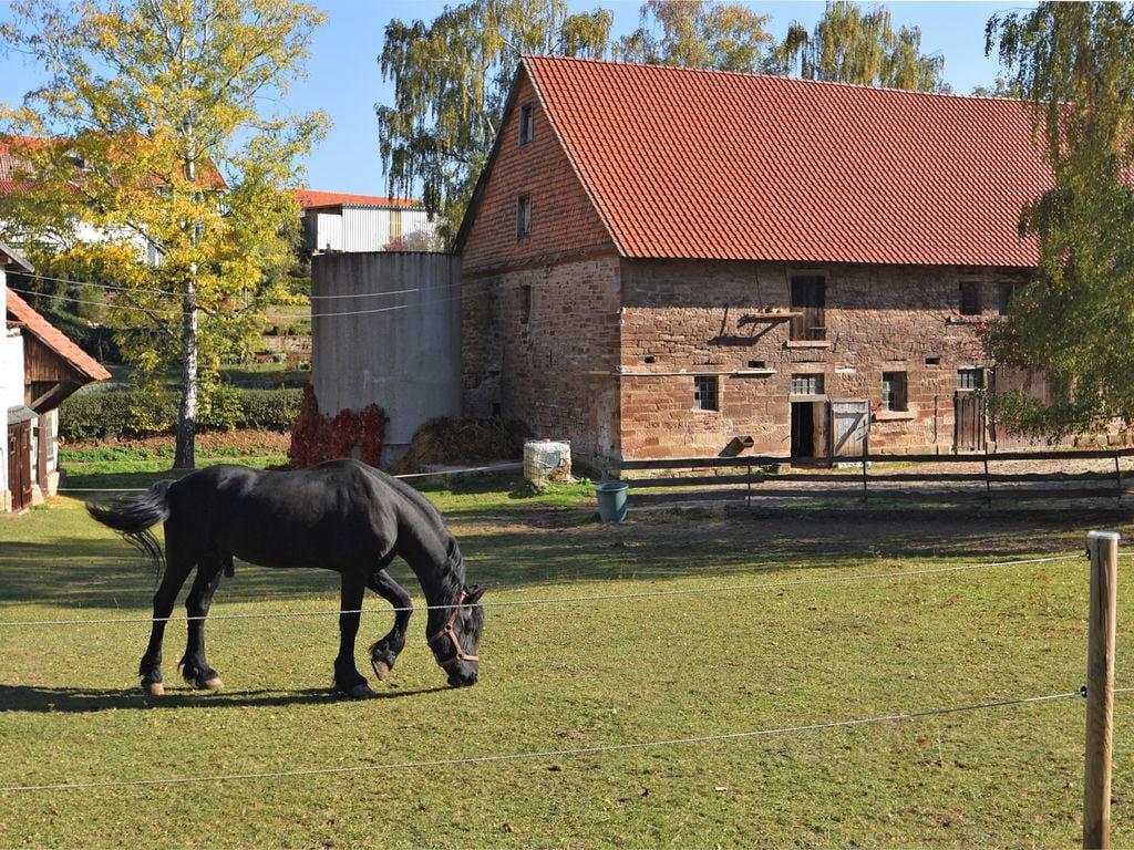 Ferienhaus Charmantes Chalet in Netze nahe des Waldes (407276), Waldeck, Waldecker Land, Hessen, Deutschland, Bild 27