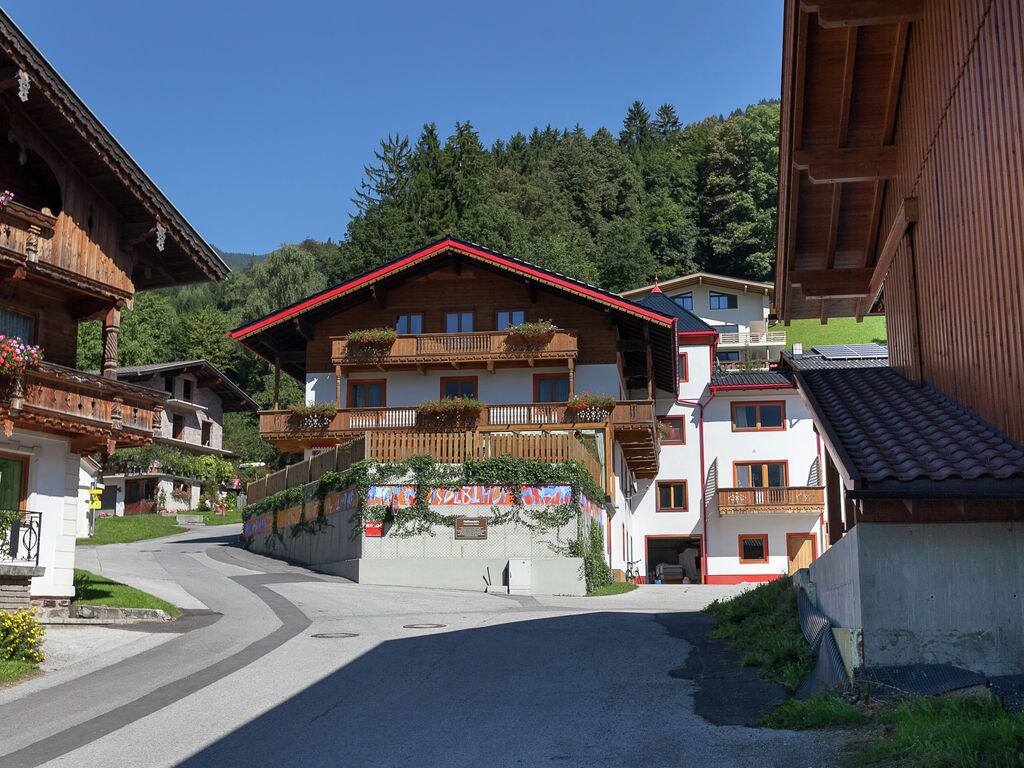 Ferienhaus Sonniger Bauernhof nahe dem Skigebiet Hochzillertal in Tirol (253740), Hochfügen, Zillertal, Tirol, Österreich, Bild 24