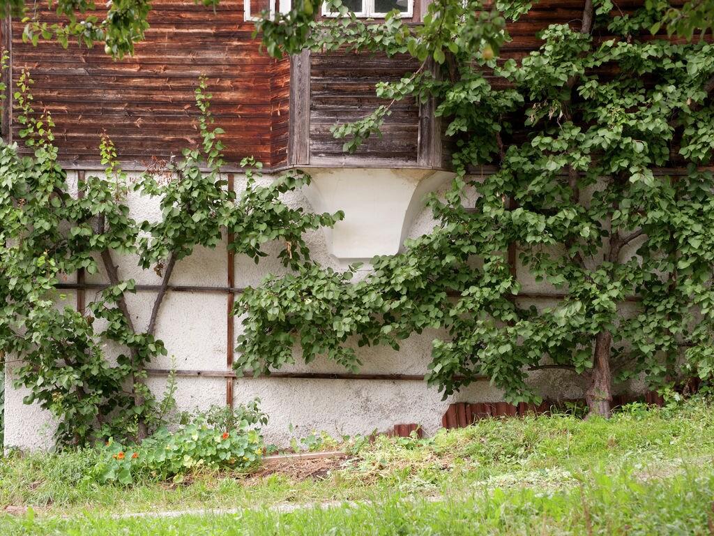 Ferienhaus Sonniger Bauernhof nahe dem Skigebiet Hochzillertal in Tirol (253740), Hochfügen, Zillertal, Tirol, Österreich, Bild 30