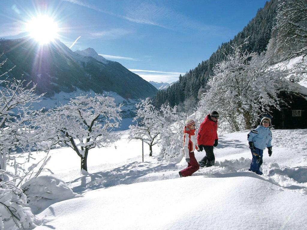 Ferienwohnung Gemütliches Appartement in Fulpmes nahe dem Skigebiet (253703), Fulpmes, Stubaital, Tirol, Österreich, Bild 17