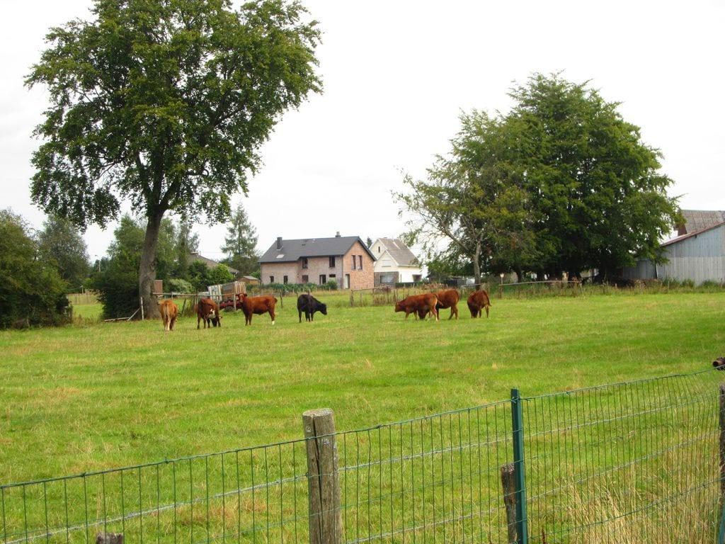 Ferienhaus Modernes Ferienhaus in Robertville mit Garten (254299), Waimes, Lüttich, Wallonien, Belgien, Bild 34