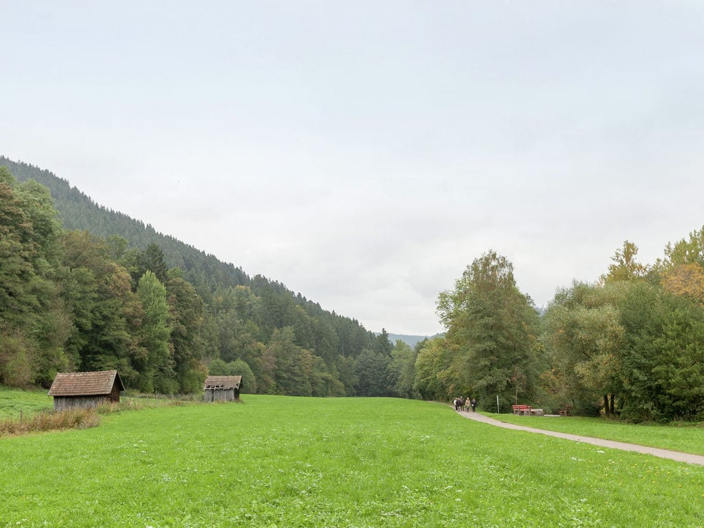 Ferienwohnung Klumpp (255335), Baiersbronn, Schwarzwald, Baden-Württemberg, Deutschland, Bild 28