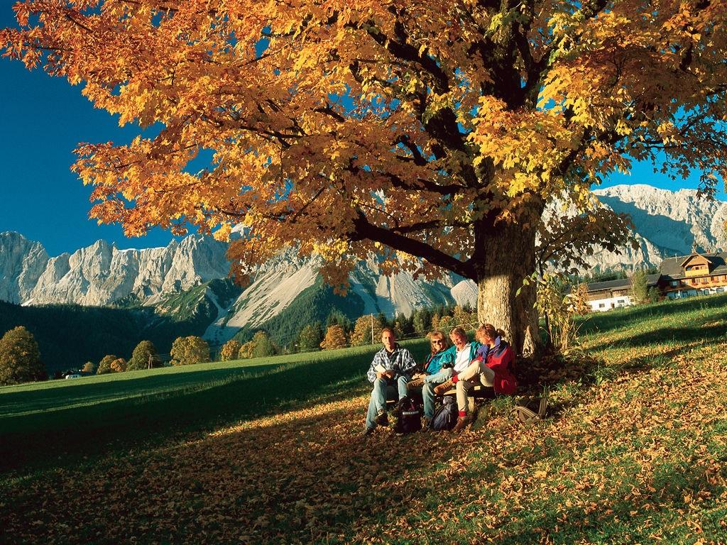 Appartement de vacances Prugger (254149), Ramsau am Dachstein, Ramsau am Dachstein, Styrie, Autriche, image 28