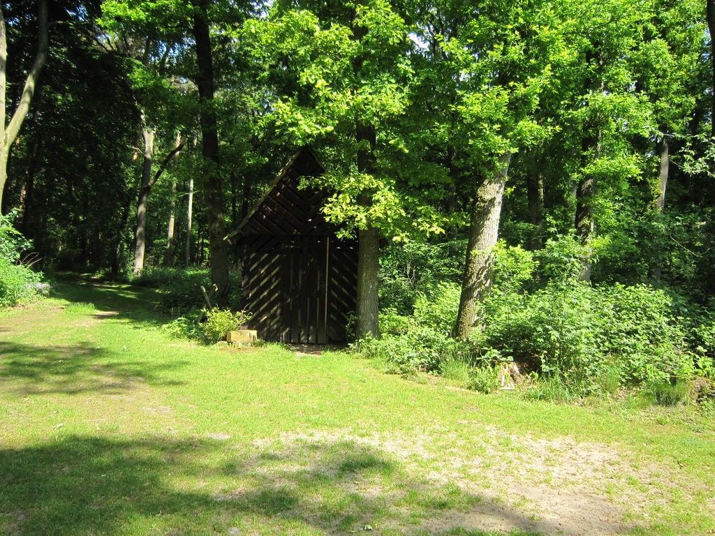 Ferienhaus Charmantes Ferienhaus in Hellendoorn inmitten des Waldes (256962), Hellendoorn, Twente, Overijssel, Niederlande, Bild 16