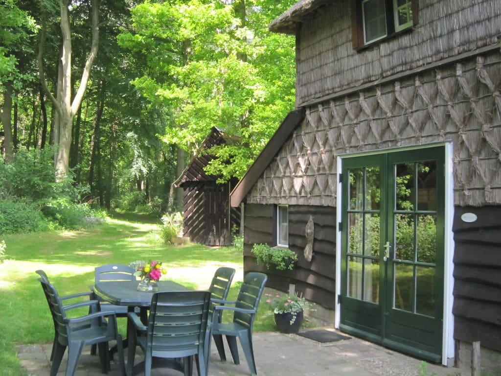 Ferienhaus Charmantes Ferienhaus in Hellendoorn inmitten des Waldes (256962), Hellendoorn, Twente, Overijssel, Niederlande, Bild 15