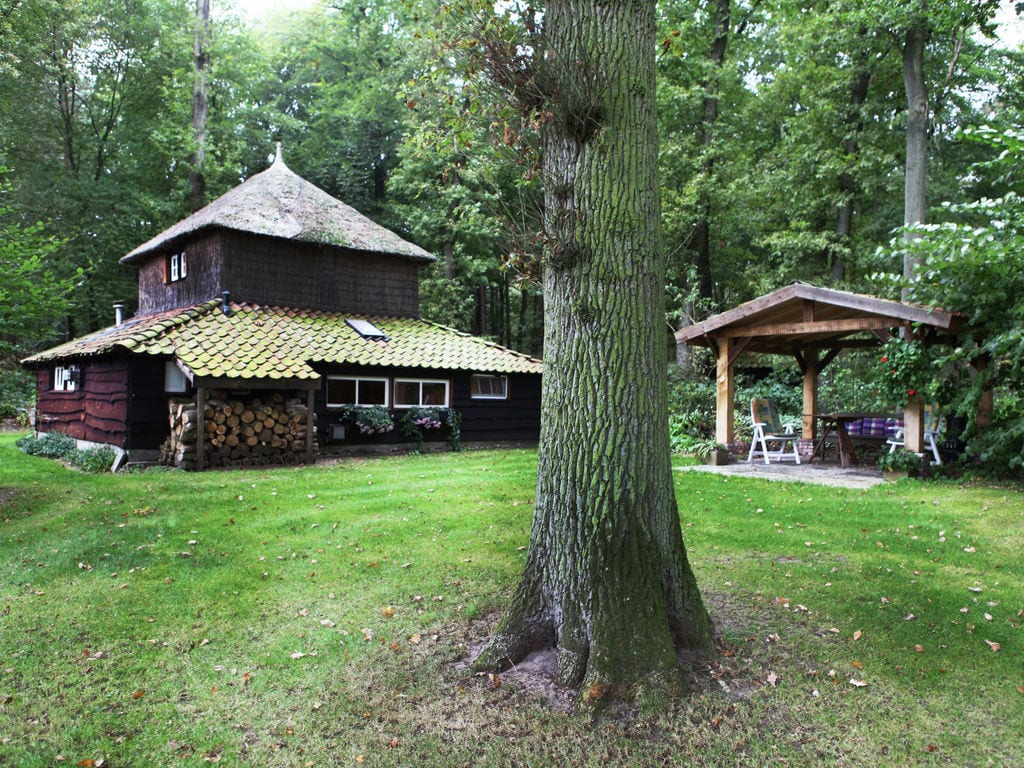 Ferienhaus Charmantes Ferienhaus in Hellendoorn inmitten des Waldes (256962), Hellendoorn, Twente, Overijssel, Niederlande, Bild 3
