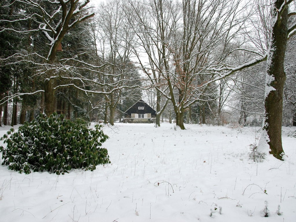Ferienhaus Johanne Louise (254444), Vielsalm, Luxemburg (BE), Wallonien, Belgien, Bild 38