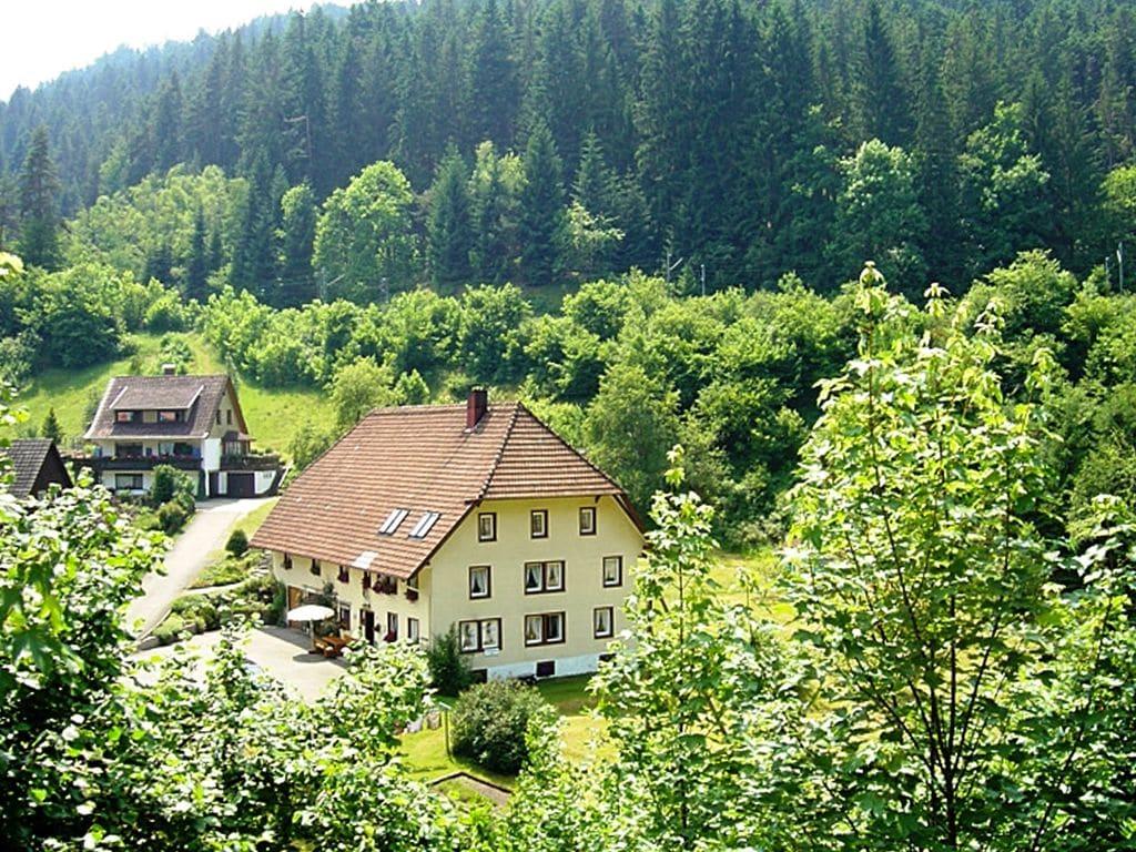 Ferienwohnung Kirchenbauer (255358), Triberg, Schwarzwald, Baden-Württemberg, Deutschland, Bild 6