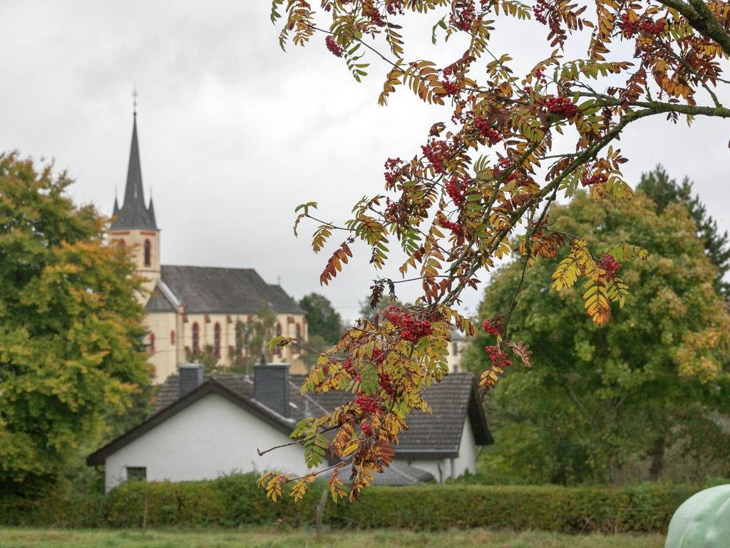 Ferienwohnung Geräumige Wohnung in Rodershausen mit Barbecue. (255206), Neuerburg, Südeifel, Rheinland-Pfalz, Deutschland, Bild 19