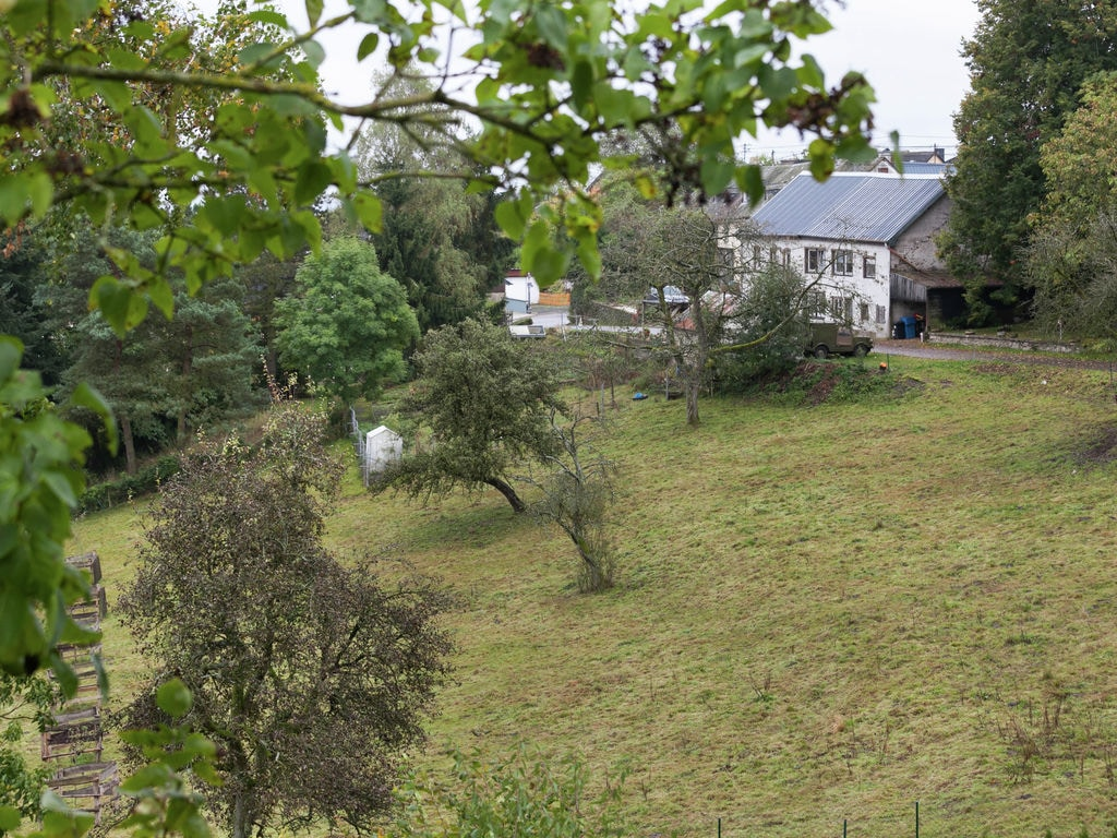 Ferienwohnung Geräumige Wohnung in Rodershausen mit Barbecue. (255206), Neuerburg, Südeifel, Rheinland-Pfalz, Deutschland, Bild 14