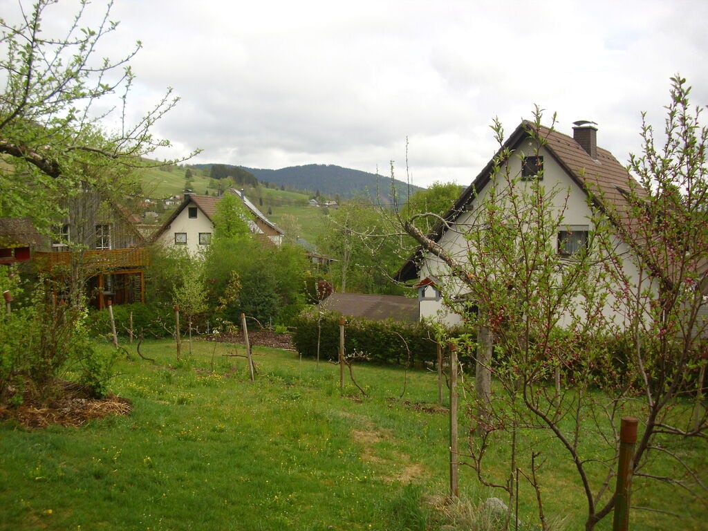 Ferienwohnung Wannenhof (255404), Bernau, Schwarzwald, Baden-Württemberg, Deutschland, Bild 60