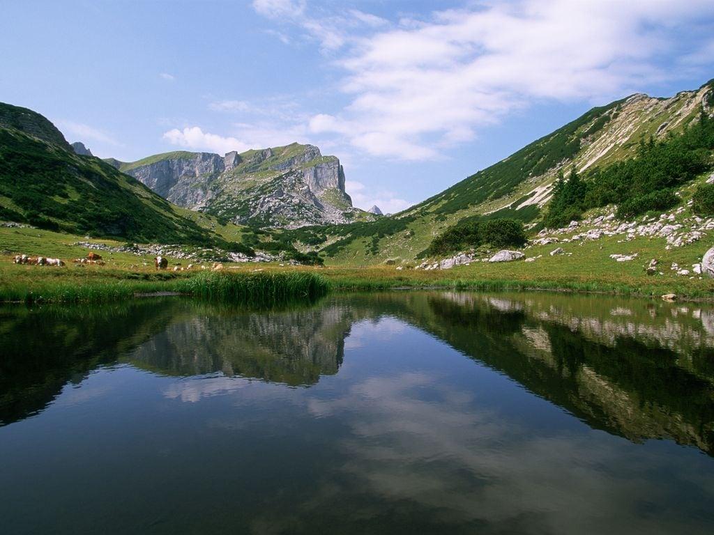 Ferienwohnung Unterhaslach (253710), Brixlegg, Alpbachtal & Tiroler Seenland, Tirol, Österreich, Bild 19