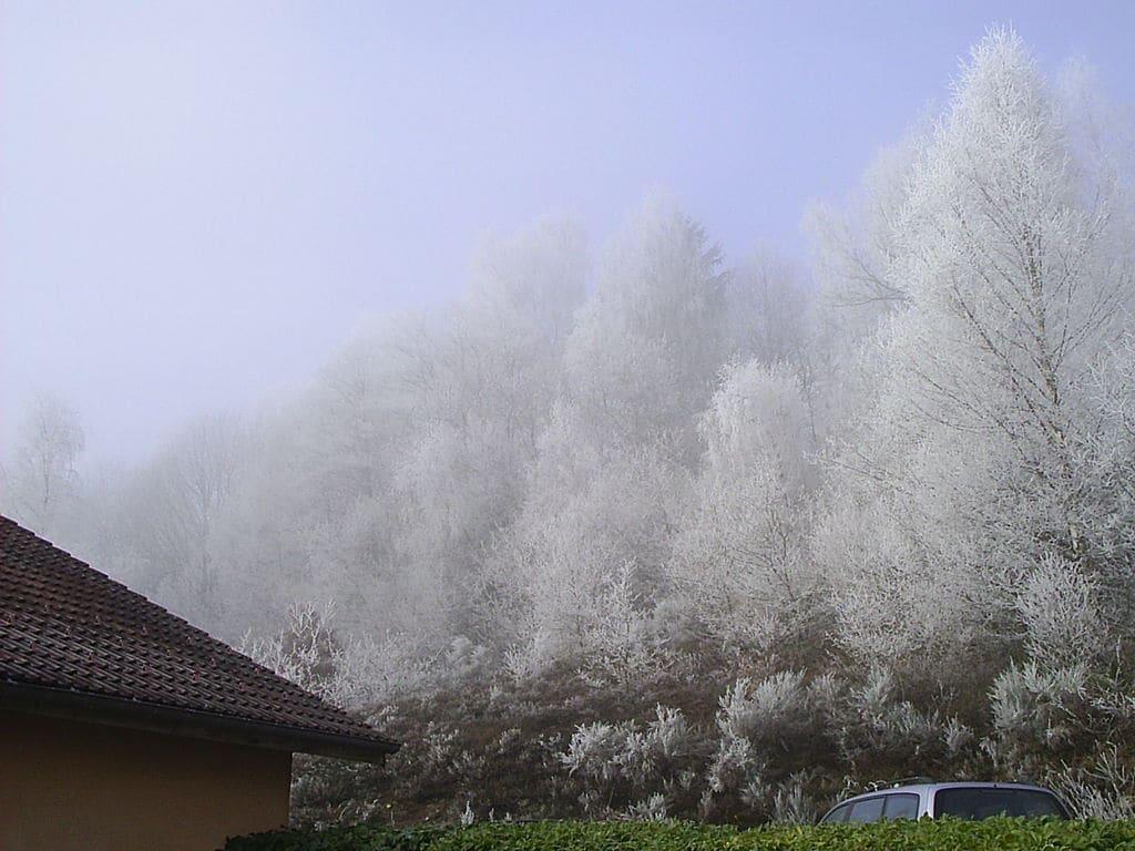 Maison de vacances à l'Orée du bois (59129), Le Thillot, Vosges, Lorraine, France, image 25
