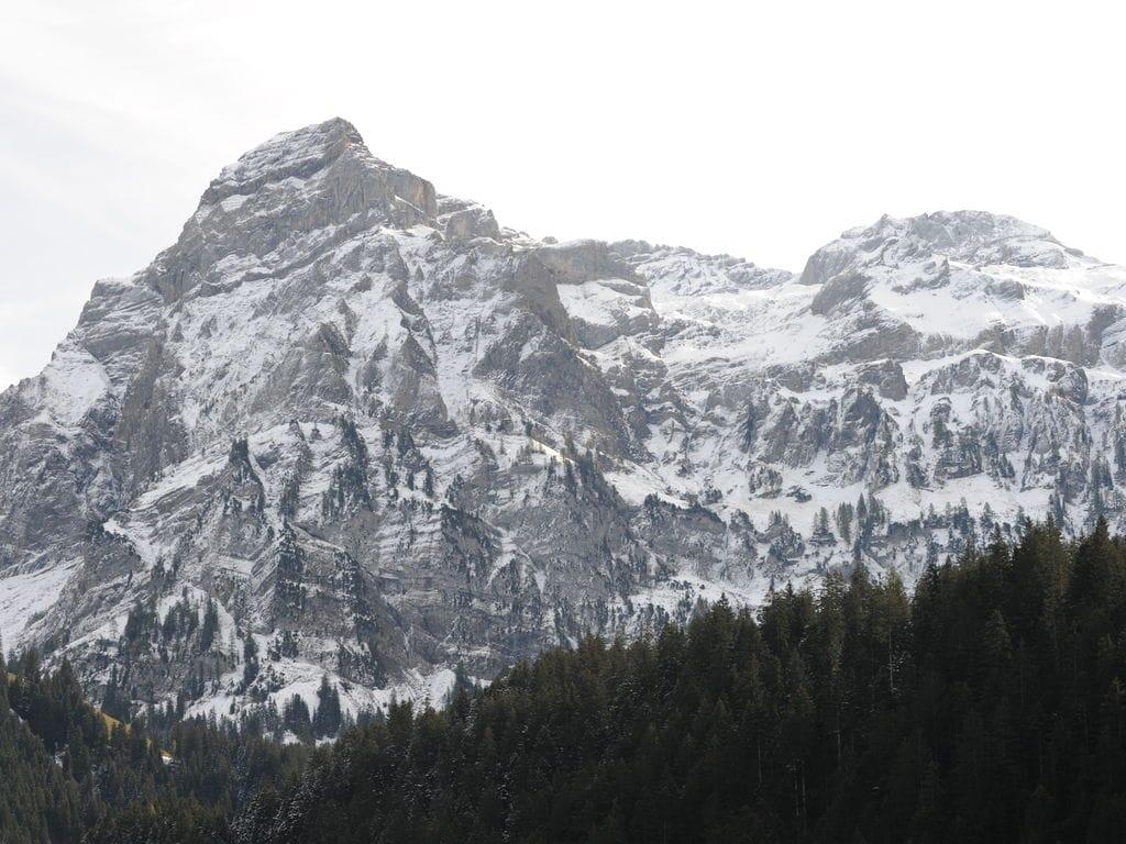 Ferienwohnung Salvisberg (254590), Lenk im Simmental, Simmental, Berner Oberland, Schweiz, Bild 23