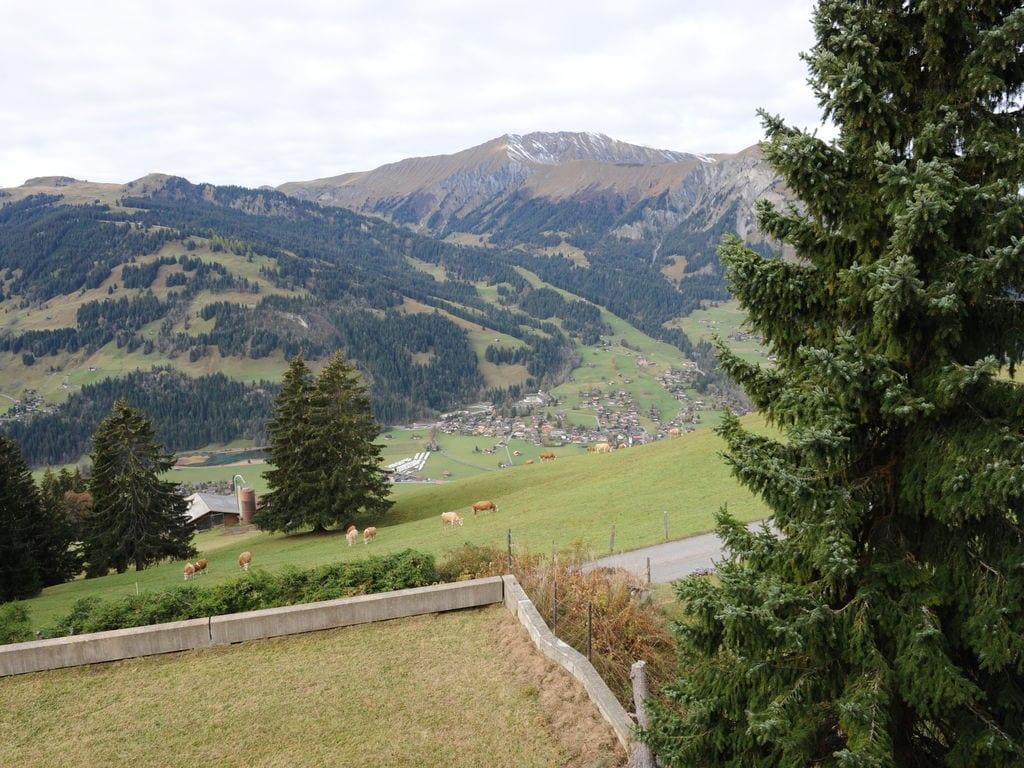 Ferienwohnung Salvisberg (254590), Lenk im Simmental, Simmental, Berner Oberland, Schweiz, Bild 31