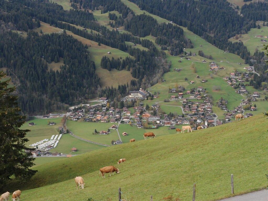 Ferienwohnung Salvisberg (254590), Lenk im Simmental, Simmental, Berner Oberland, Schweiz, Bild 30
