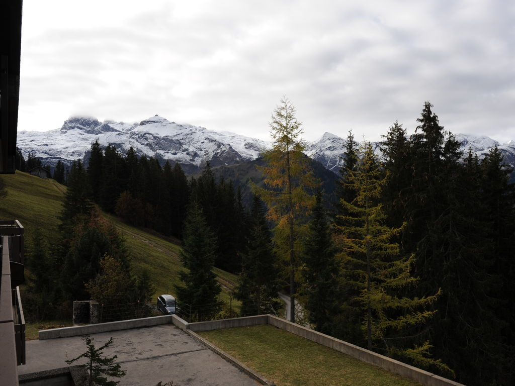Ferienwohnung Salvisberg (254590), Lenk im Simmental, Simmental, Berner Oberland, Schweiz, Bild 28