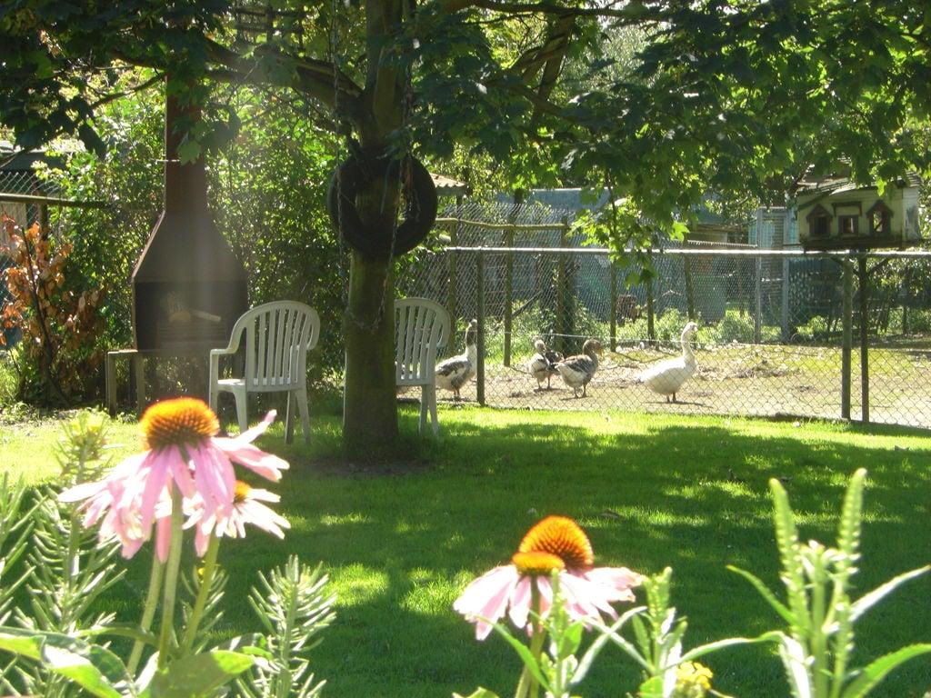 Ferienhaus Gemütliches Ferienhaus in Bergen op Zoom mit Garten (59165), Tuinwijk, , Nordbrabant, Niederlande, Bild 27