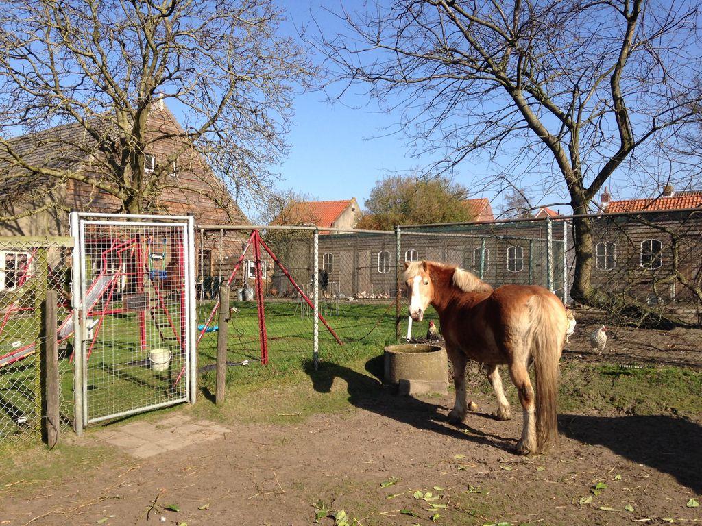 Ferienhaus Gemütliches Ferienhaus in Bergen op Zoom mit Garten (59165), Tuinwijk, , Nordbrabant, Niederlande, Bild 28