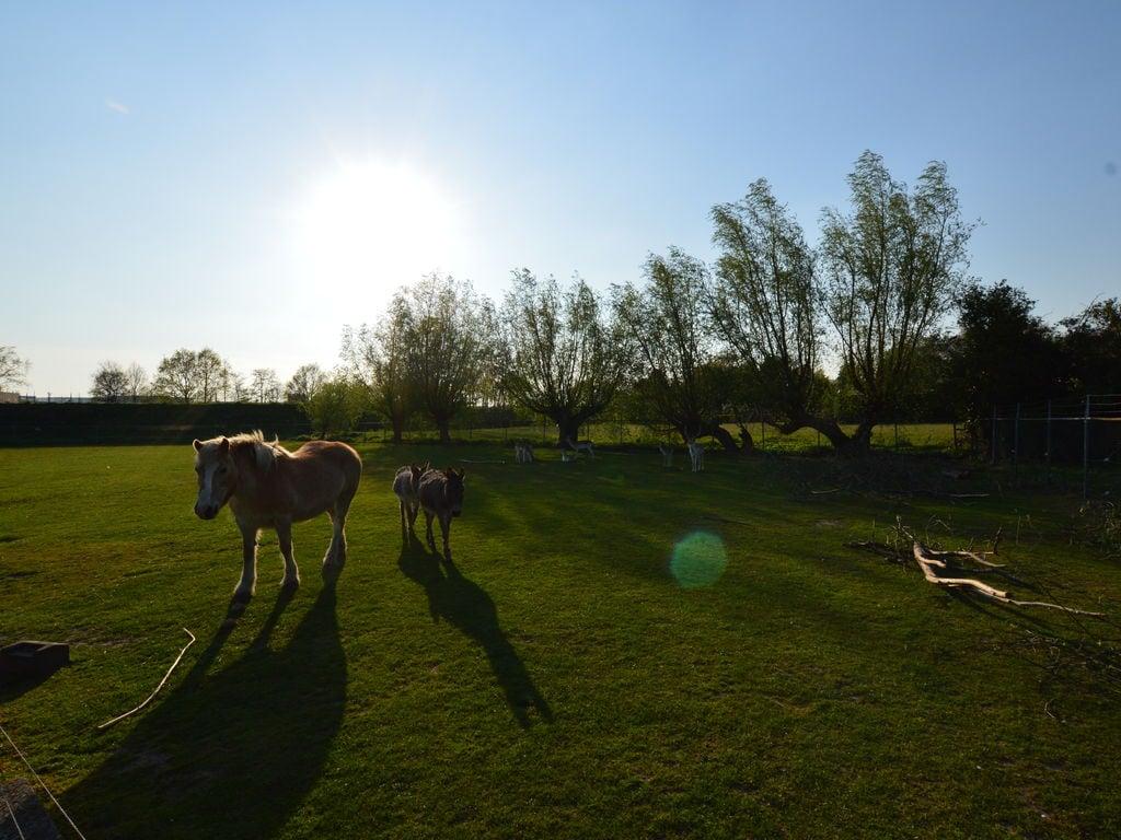 Ferienhaus Luxuriöser Bauernhof in Nord-Brabant am See (59166), Tuinwijk, , Nordbrabant, Niederlande, Bild 34