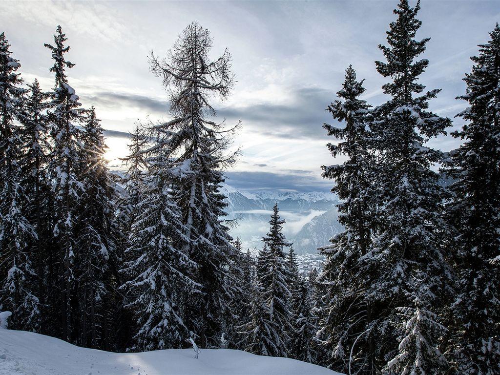 Holiday house Holleri (254671), Betten, Aletsch - Goms, Valais, Switzerland, picture 21