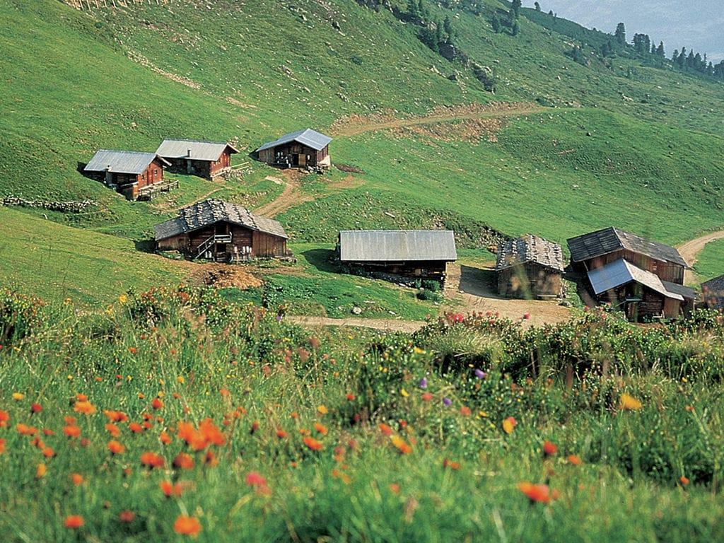 Ferienwohnung Großzügiger Bauernhof in Aschau im Zillertal mit Wiesenblick (253792), Aschau (Zillertal), Zillertal, Tirol, Österreich, Bild 38