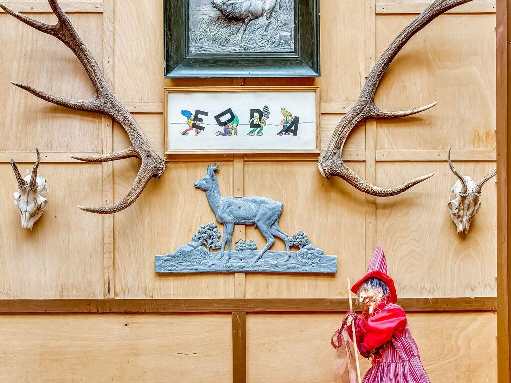 Ferienwohnung Schöne Wohnung im Ilsenburger Harz nahe des Skigebietes (255066), Ilsenburg, Harz (Sachsen-Anhalt), Sachsen-Anhalt, Deutschland, Bild 28