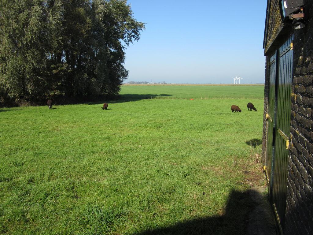 Ferienhaus Visserhuis Het Achterend (60982), Warns, IJsselmeer (Friesland/NL), Friesland (NL), Niederlande, Bild 16