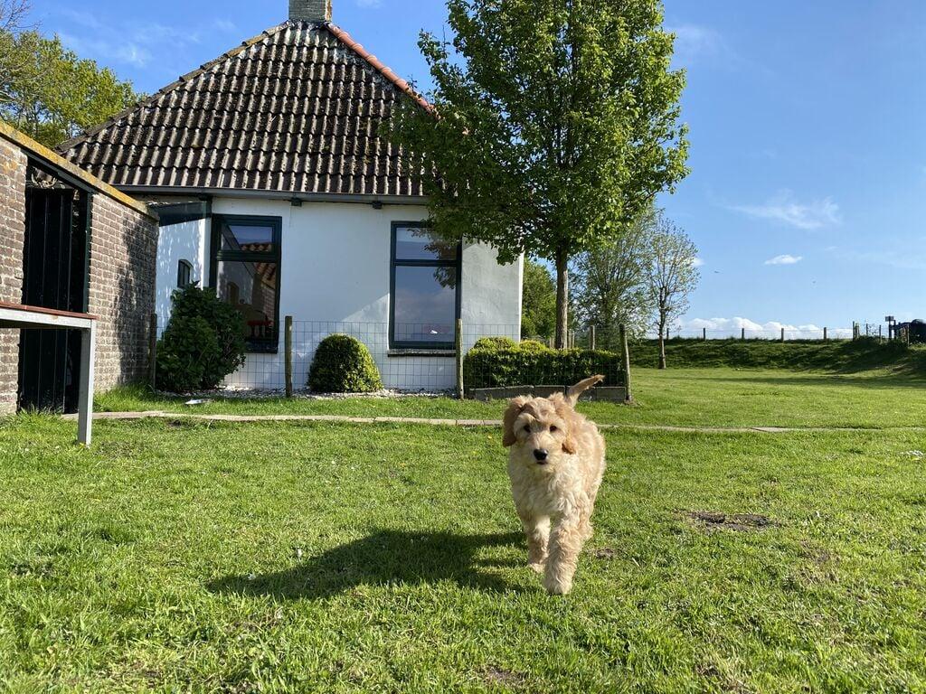 Maison de vacances Gemütliches Ferienhaus in Laaksum, 150 m vom See entfernt (60982), Warns, IJsselmeer (Frise/NL), Frise (NL), Pays-Bas, image 23