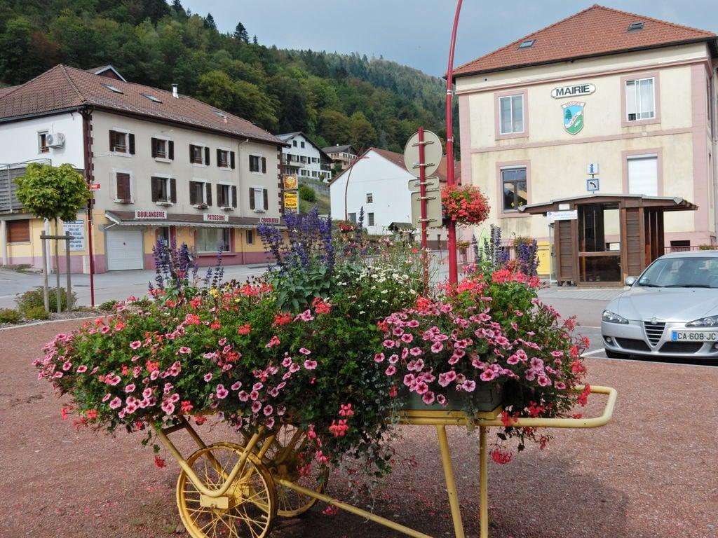 Maison de vacances ISATIS (59154), Le Thillot, Vosges, Lorraine, France, image 35