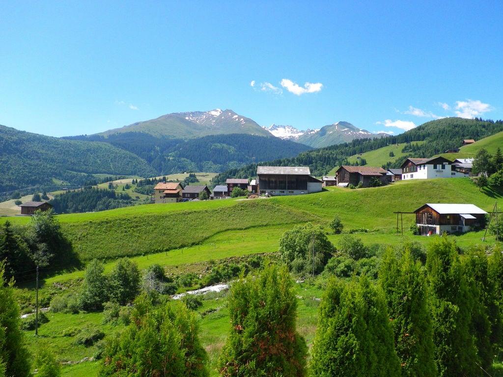 Ferienwohnung Ruhige Ferienwohnung in Waldnähe in Segnas (254681), Segnas, Disentis - Sedrun, Graubünden, Schweiz, Bild 13